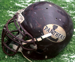 LeRoy Panthers football